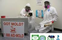 mold_remediation_Houston