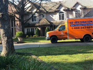 Mold Remediation in Houston